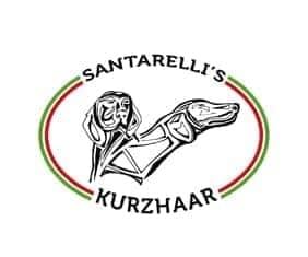 Allevamento Santarelli's Biglietti da visita